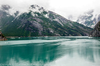 Tracy Arm Fjord- National Geographic tour boat Sea Lion in distance