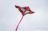 Colorful Kites are Everywhere!!